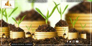 Arsa Yatırımcılarına Altın Öneriler